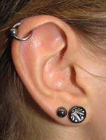 <p>Ear Stretching</p>