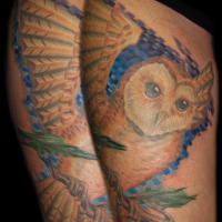 052e27f6551b396050fd45afa7413971d51beff5_eule_tattoo.jpg
