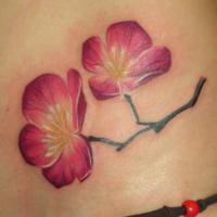 21e4cd4d2465eb16b902f62f425bc79973de6481_kirschblueten_tattoo.jpg